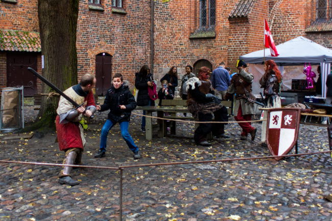 Read more about the article Herlufsholm Fantasy Bogmesse