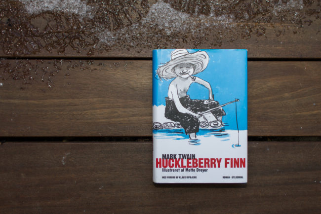 Read more about the article Huckleberry Finn