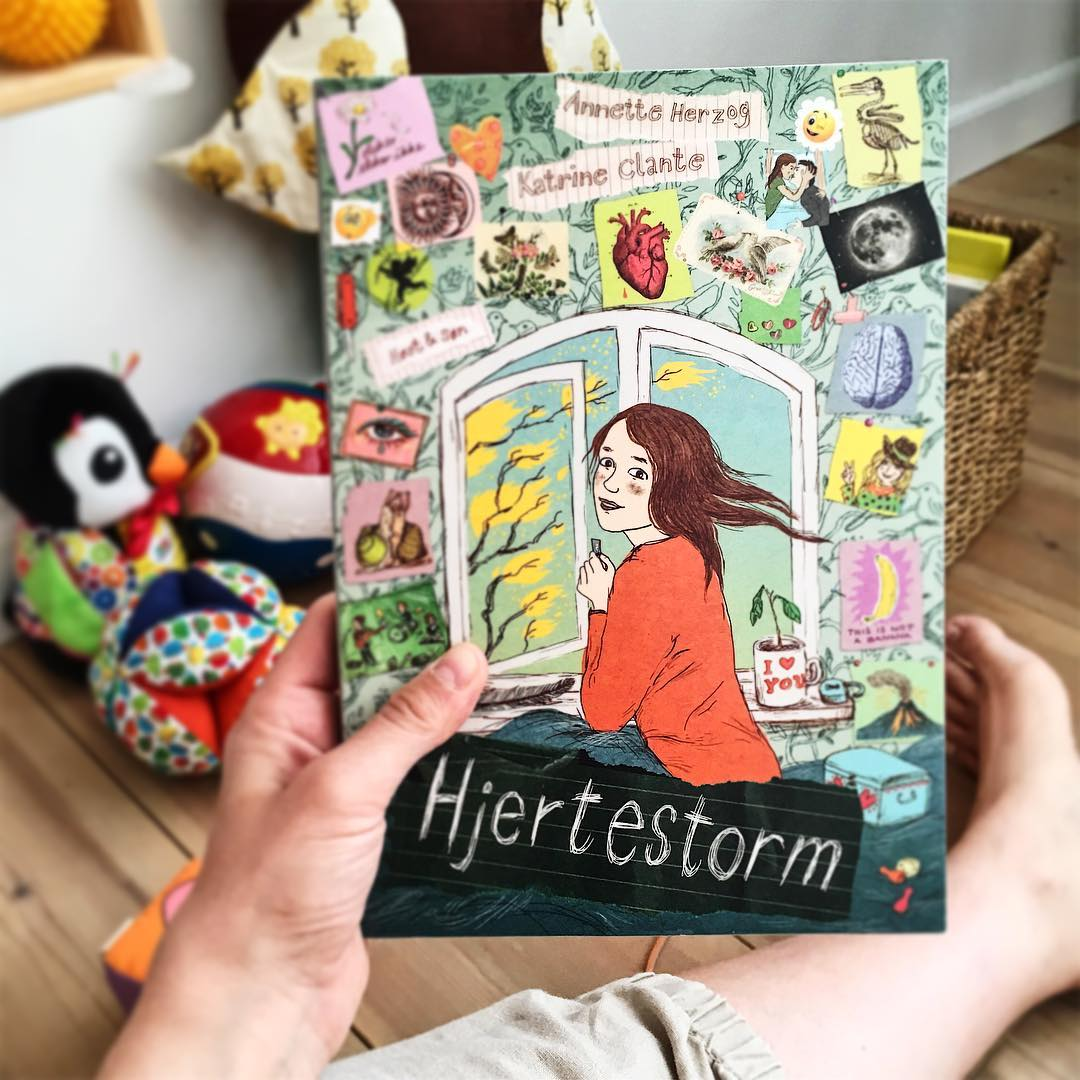 Read more about the article Hjertestorm/Stormhjerte